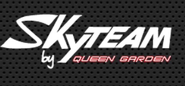 Skyteam-logo